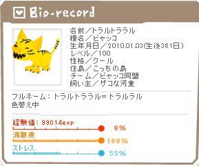 100れべになったトラ(101230.jpg