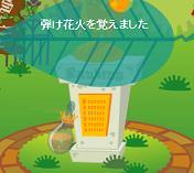 はじけ花火(100807.jpg