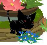 真っ黒なトラ(100807.jpg